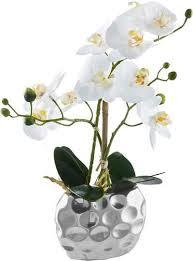 kunstpflanze orchidee orchidee leonique höhe 38 cm