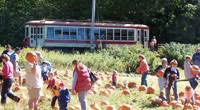 Portland Maine Pumpkin Patch by Southern Maine And Portland Pumpkin Patches Corn Mazes Hayrides