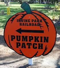 Cahuenga And Riverside Pumpkin Patch by 74 Best Newport Beach Ca Images On Pinterest Newport Beach