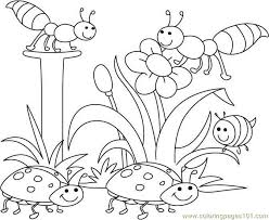 Colouring Templates Flowers Bugs And Pages VBS 2015 Journey Off The Map