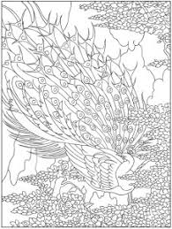 Coloring Pages Peacock Printable Designs