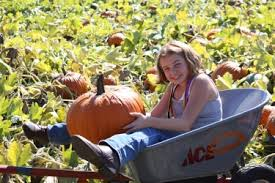 Pumpkin Patch Medford Oregon by Fort Vannoy Farms Fresh Local Produce Corn Maze And Pumpkin