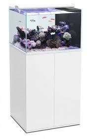 ensemble aquarium eau de mer meuble ultra clear tout équipé