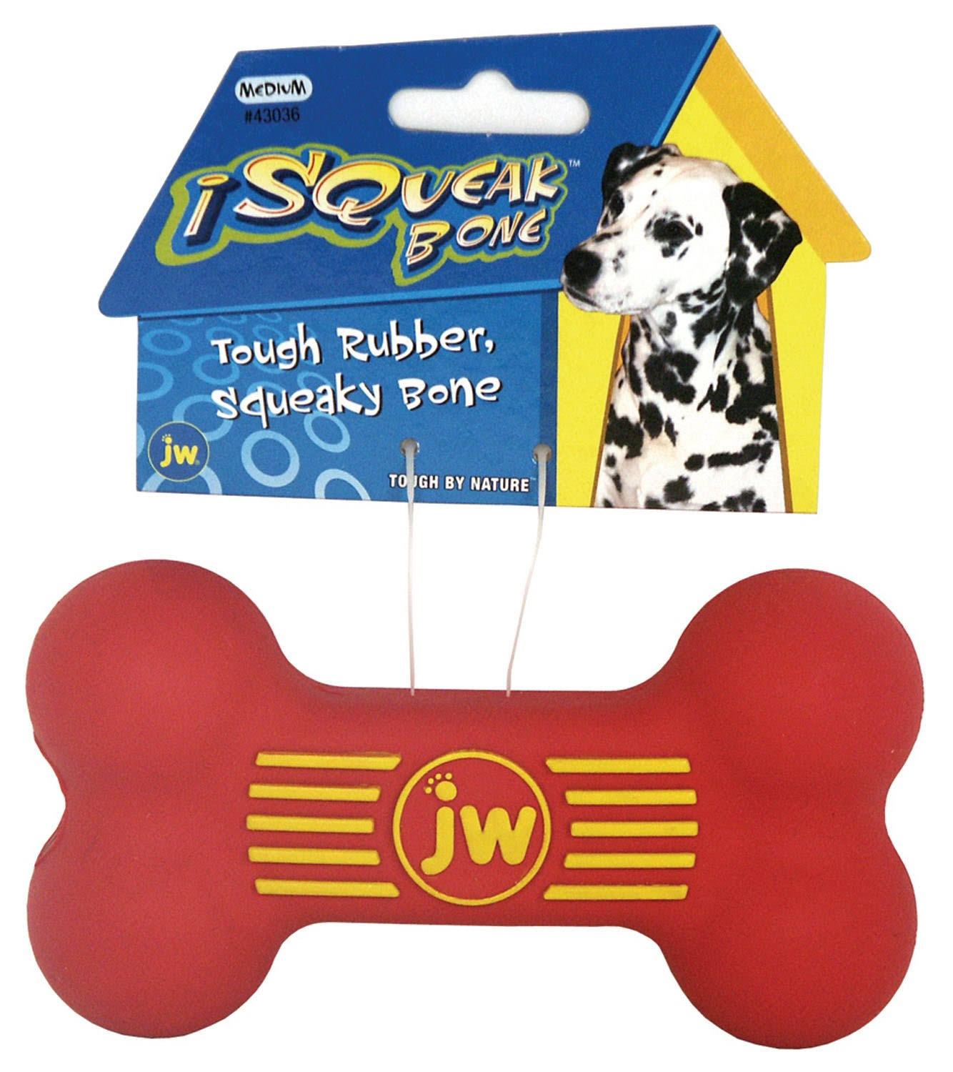 JW Pet Company iSqueak Bone Rubber Dog Toy - Medium, Colors Vary