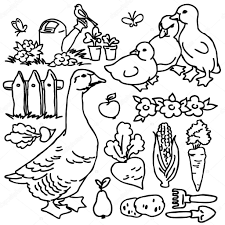 Cartoon Farm Animals Vegetables Flower Garden Tools Fruits And Decoration Elements For Kid Drawing Photo By Dobrynina Art