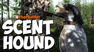 Do Treeing Walker Coonhounds Shed by Hunting With Scent Hounds Thehunter 2016 Gameplay W Leeroy Youtube