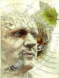 Artistic Rendering Of Rupert Sheldrake What Is Morphic Resonance
