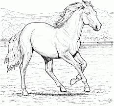 Running Mare Horse Coloring Page From Horses Category Select 27278 Printable Crafts Of Cartoons Nature Animals Bible And Many More