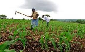 interieur sud 17 afrique du sud une croissance en hausse pour le troisième