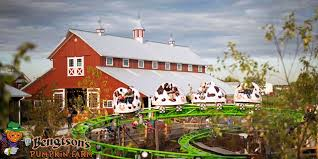 Bengtson Pumpkin Farm Chicago by Bengtson U0027s Pumpkin Farm Home Facebook