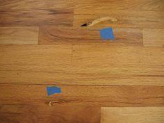 Shark Steam Mop Unsealed Hardwood Floors by Shark Steam Mop Unsealed Hardwood Floors Http Glblcom Com