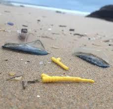 lego washed up on british beaches weird news express co uk