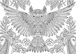 Abstract Owl Coloring Pages For Adults