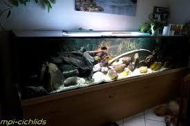 wohnzimmer aquarium 2 0 eigenbau bastelecke
