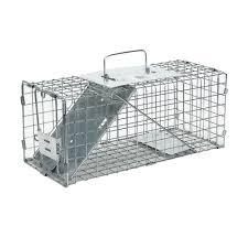 live cat trap small 1 door live trap for minks small animals havahart 1077