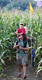 Lodi Pumpkin Patch Wisconsin by How To Solve The Maze Treinen Farm Corn Maze U0026 Pumpkin Patch