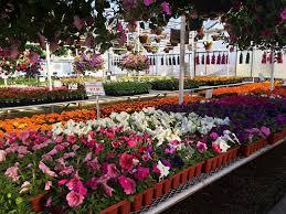 Quality Plants & Landscape Supply Maria Gardens Center