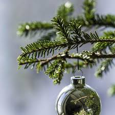 Many Christmas Activities Are Being In The Local Region Local News
