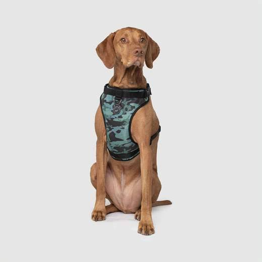 The Everything Harness Water-Resistant Series - Camo - Canada Pooch