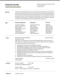 Business Development Resume Sample 6 Pleasant Idea Manager CV Template Managers