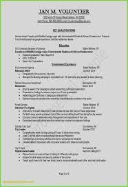 Awesome Resume Sample With Experience For It Professional Inspirational Resumes New Best