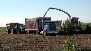 100 Silage Trucks Putting Farm Safety Into Practice Silage And Grain Harvest