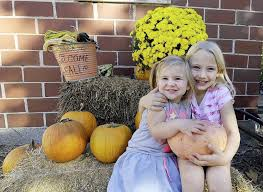 Pumpkin Patch Joplin Mo 2015 by Pink Pumpkins Tasty In Pies Sales Benefit Breast Cancer Research