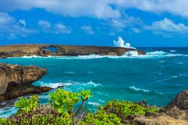 5 Reasons To Relocate To Oahu - United Truck Rental - Honolulu | NearSay United Truck Driving School Cost Costco Tire Center 27 Reviews Tires 2019 Unitedbuilt Wt4000 Phoenix Az Equipmenttradercom About 2018 Intertional Workstar 7400 Sba Water For Sale Auction Or Trailer Parts 2015 Ford F150 Xl Power Equipment Alloy Wheels Cruise In Mack Defense Showcases Granitebased M917a3 Heavy Dump Rentals Case Study Consolidated Home Facebook Feed Index Cooperative Mobile Nrh Fire On Twitter Update Wb 820 Toll Will Now Be Closed At The Kenworth T370 Lease