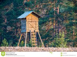 100 House In Forest Hunter House In Forest Stock Photo Image Of Cabin Leader 114830262