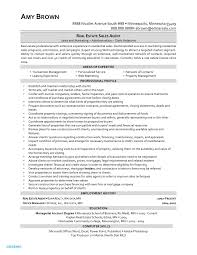 Real Estate Agent Resume Example Realtor Examples Free Letter Templates Line Jagsa
