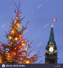 12 Ft Christmas Tree Canada by Canada Christmas Trees Christmas Lights Decoration