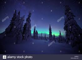 Northern lights in snow covered forest Riisitunturi National