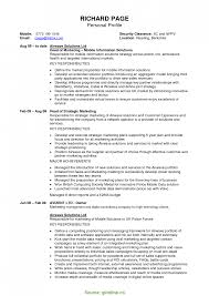 Regular Resume Profile Statement Academic Cv Example Sales At