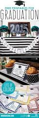 Graduation Decorations 2015 Diy by 141 Best Graduation Party Planning 2019 Is Coming Way Too Fast