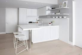 100 Small Kitchen Design Tips Cesar NYC S Luxury