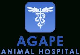 agape animal hospital agape pet hospital vodkayaourt