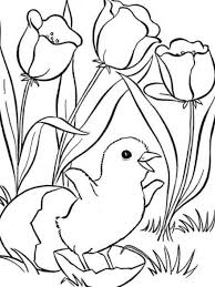 Cute Little Chick And Flower Spring Animal Coloring Pages