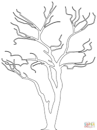 Outline Drawing Of A Tree Bare Tree Outline Coloring Page