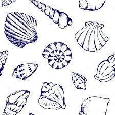 100 Sea Shell Design Best Free Stock Illustration Monochrome S Vector Mless