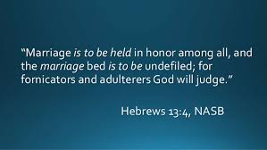 The Marriage Bed Is Undefiled living the practical christian life