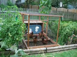 Collection Backyard Vegetable Garden Design Photos, - Best Image ... 38 Homes That Turned Their Front Lawns Into Beautiful Perfect Drummondvilles Yard Vegetable Garden Youtube Involve Wooden Frames Gardening In A Small Backyard Bufco Organic Vegetable Gardening Services Toronto Who We Are S Front Yard Garden Trends 17 Best Images About Backyard Landscape Design Ideas On Pinterest Exprimartdesigncom How To Plant As Decision Of Great Moment Resolve40com 25 Gardens Ideas On