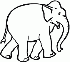 Elephant Coloring Pages Dr Odd Page Image