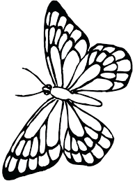 Free Butterfly Coloring Pages For Adults Printable Kids Monarch Page Downloadable Fairy