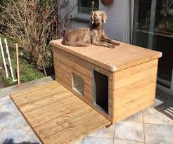sauerland isolierte hundehütte luxus flachdach fenster vorraum imprägniert eingang längsseite