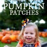 Pumpkin Patch Houston Tx Area by 2017 Houston Pumpkin Patch Round Up