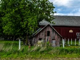 Tis The Gift To Be Simple | Exploring Our World Pine Board Batten Garages Rustic Horizon Structures 10 Best Country Roads Fences And Barns Images On Pinterest Old 4 Horse Barn Just Forum The Beauty Of Linda Straub Scene Through My Eyes Apple Trees May Sale Get A Graceland Portable Bldg Delivered For Just 99 Pretty Red Barn A Cultivated Nest Bypass Style Closet Doors Httpsourceablcom Home Ideas Homes With That Are Living Quarters Kits Project North Western Images Photos By Andy Porter 9jpg Ghost Sign Harvest 7 Pennsylvania More An Owl