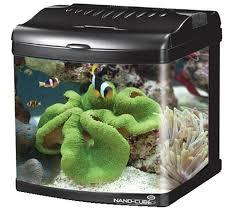 aquarium nano eau de mer la technique de l aquarium marin et récifal