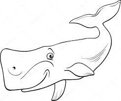 Dibujos Animados De Ballenas Para Colorear Animales Dibujos