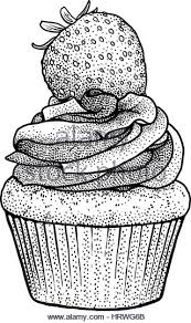 Cupcake illustration drawing engraving ink line art vector Stock Image