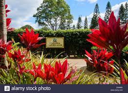 The Pineapple Garden Maze at the Dole Plantation in Wahiawa Oahu